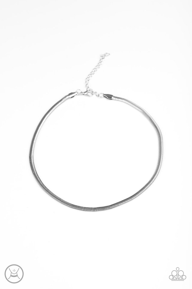Flat Out Fierce - Silver - Paparazzi Necklace Image