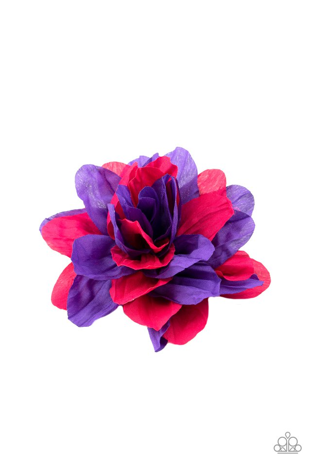 Rainbow Gardens - Purple - Paparazzi Hair Accessories Image