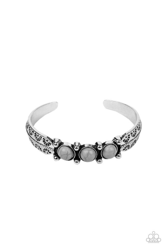 Mojave Glyphs - Silver - Paparazzi Bracelet Image