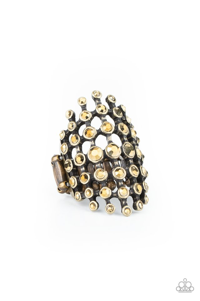 Fiercely Flashy - Brass - Paparazzi Ring Image