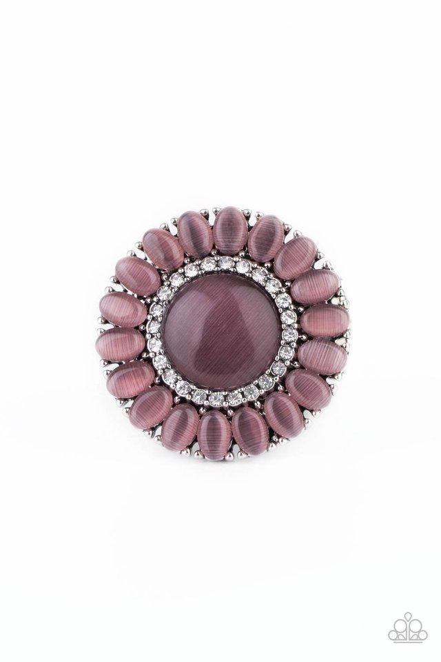 Elegantly Eden - Purple - Paparazzi Ring Image