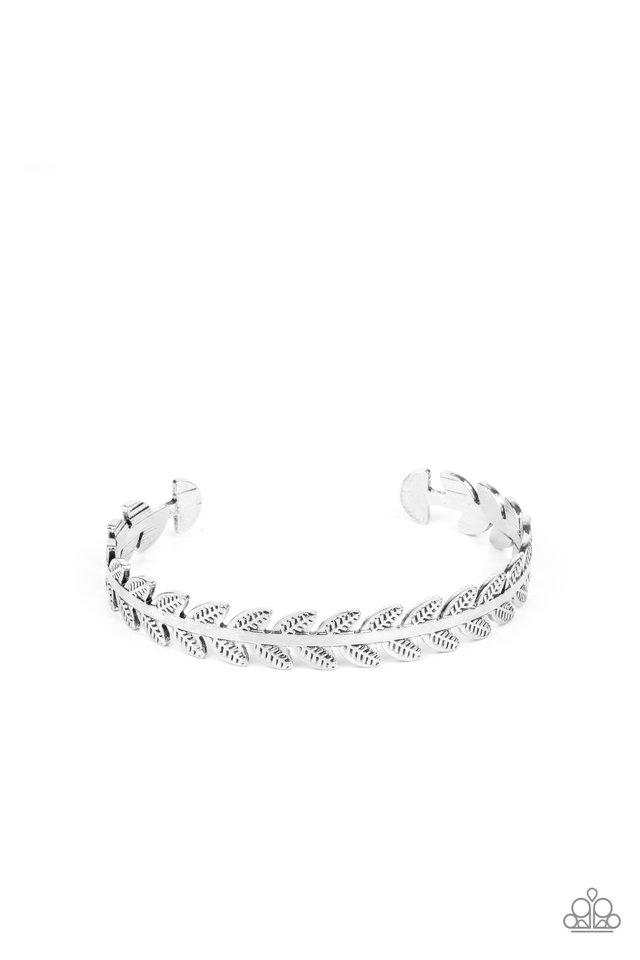 Laurel Groves - Silver - Paparazzi Bracelet Image