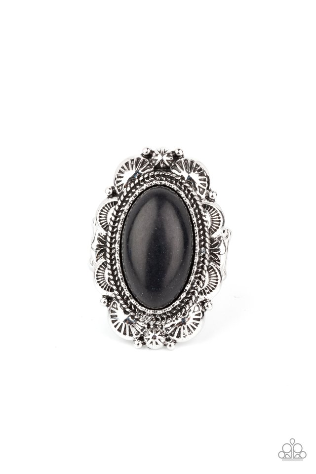 Bring Down The RANCH House - Black - Paparazzi Ring Image