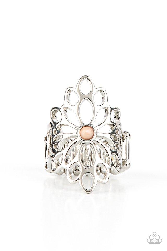 Perennial Daydream - Brown - Paparazzi Ring Image